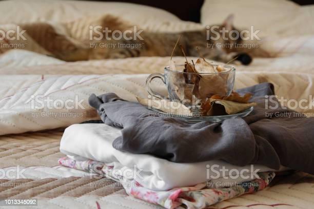 Cozy indoor autumn mood female clothes folded on the bed with a mug picture id1013345092?b=1&k=6&m=1013345092&s=612x612&h= grrzuvbamv1 lfkahoajxbbgx6i5tgjguswejw4erc=