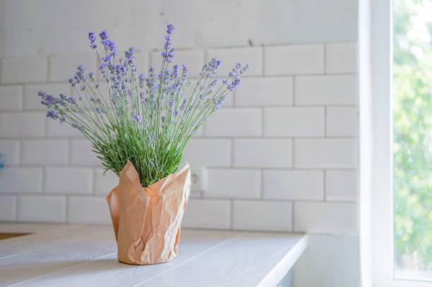gemütliche küche interieur mit lavendel blume vorne - küche deko lila stock-fotos und bilder