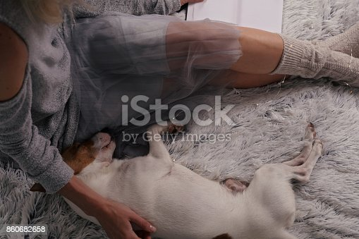 618750646 istock photo Cozy lazy day at home. Woman relaxing at home, playing with dog, jack Russel terrie Relaxing, comfy lifestyle. 860682658