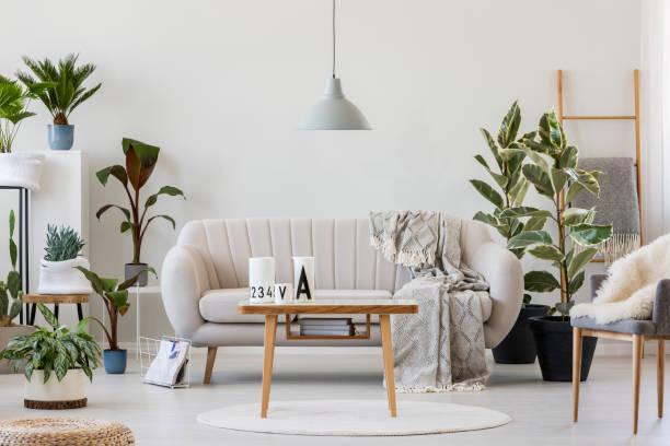 gezellige woonkamer interieur - interior design stockfoto's en -beelden