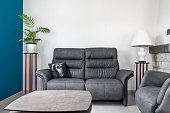 Bright view of a cozy new home interior, french culture, living room with grey sofa, original throw pillow with black and white puppy dog head portrait, green plant, lamp and table in foreground, on textured wallpaper.