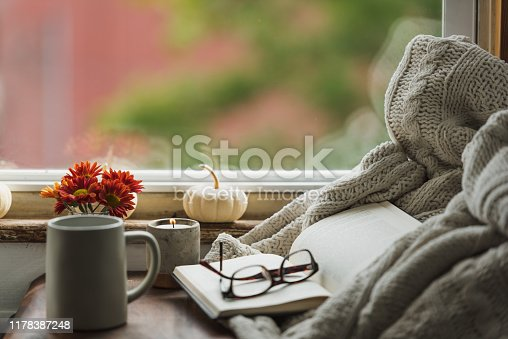 istock A cozy reading nook in the fall with a blanket and coffee 1178387248