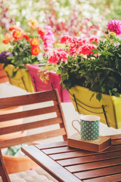 Gemütliche Sommer Balkon mit vielen Topfpflanzen, Tasse Tee und alte Oldtimer Buch – Foto