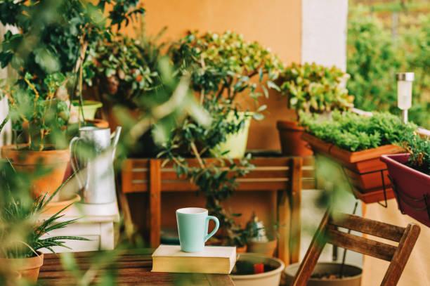 Gemütlicher Sommerbalkon mit vielen Topfpflanzen, Tasse Tee und altem Vintage-Buch – Foto