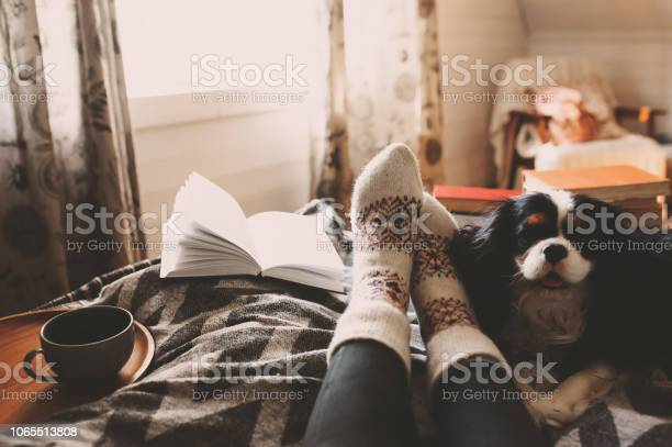 Cozy winter day at home with cup of hot tea book and sleeping dog picture id1065513808?b=1&k=6&m=1065513808&s=612x612&h=mf0ise5fenll2a6ewgi1bji nvbpvr pcpb 1bkym3c=