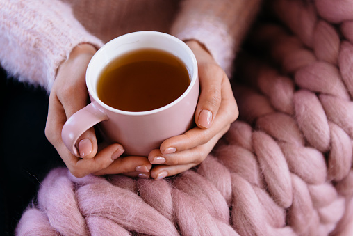 Cozy winter morning, woman hands holding teacup