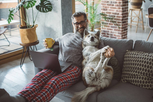 Cozy working evening during pandemic stock photo