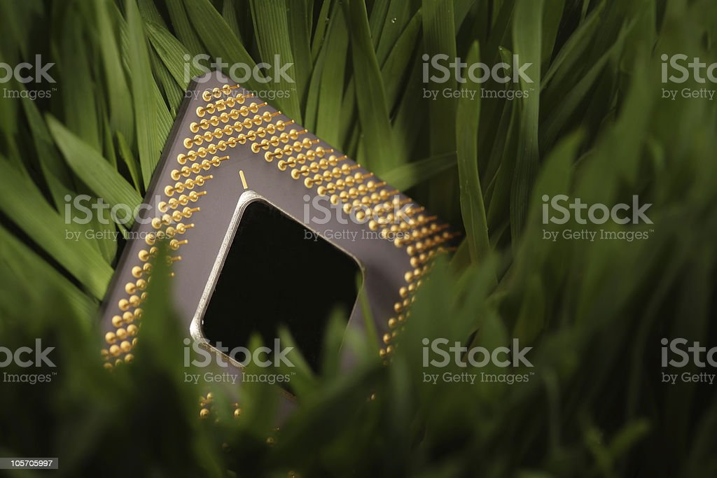 cpu in a green meadow stock photo