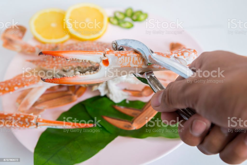 Crab cracker with blue crab stock photo