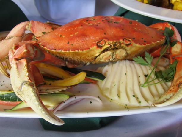abendessen für eine krabbe - meeresfrüchte enchiladas stock-fotos und bilder