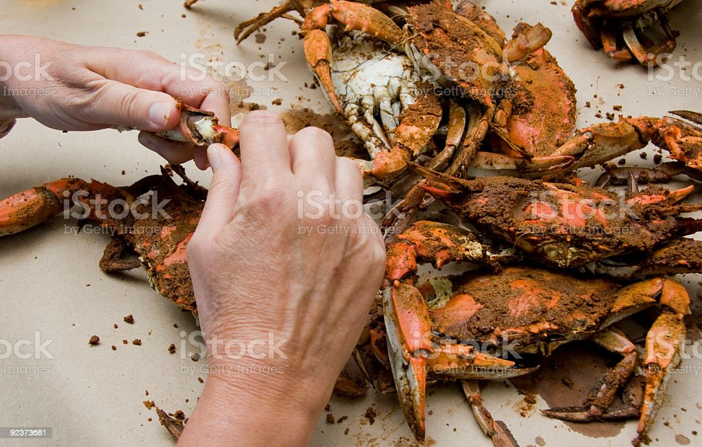Crab Feast royalty-free stock photo