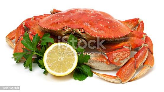 Crab isolated on white background with lemon garnish.