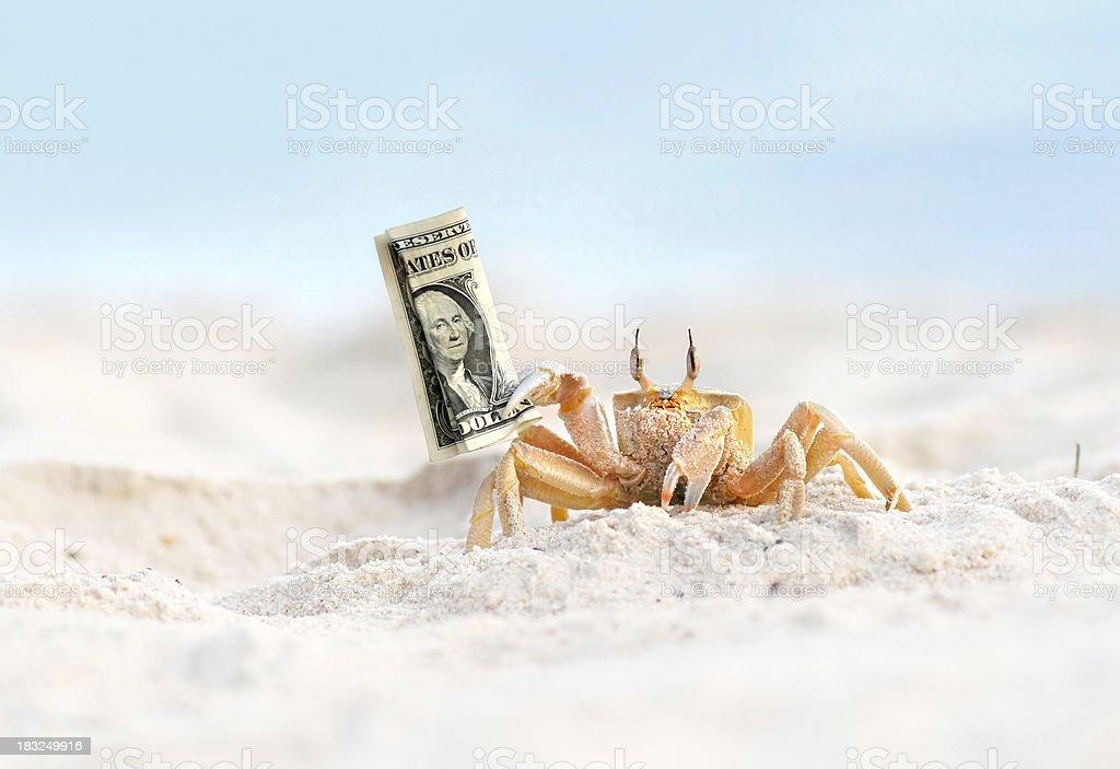 crab stealing dollar stock photo