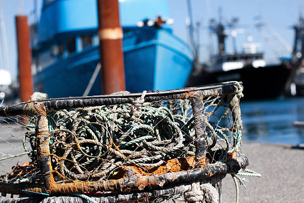 Crab traps at the ocean stock photo