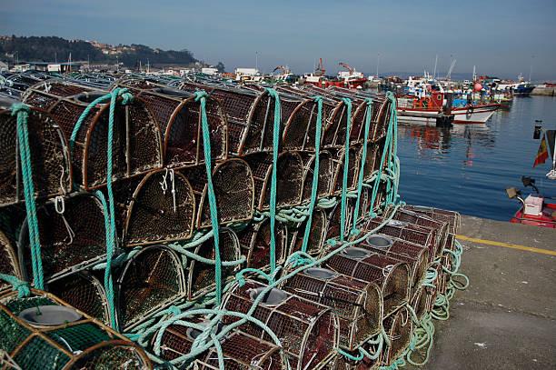 Crab fängt im Hafen – Foto