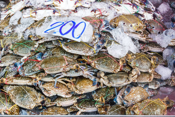 Krabben zum Verkauf – Foto