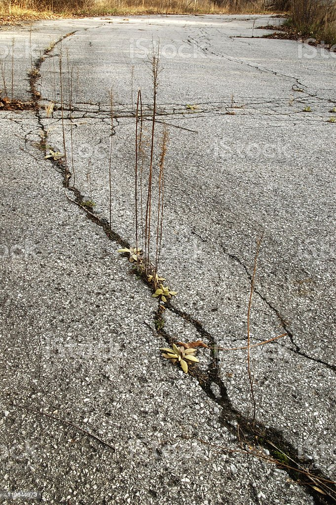 Crack in the road. stock photo
