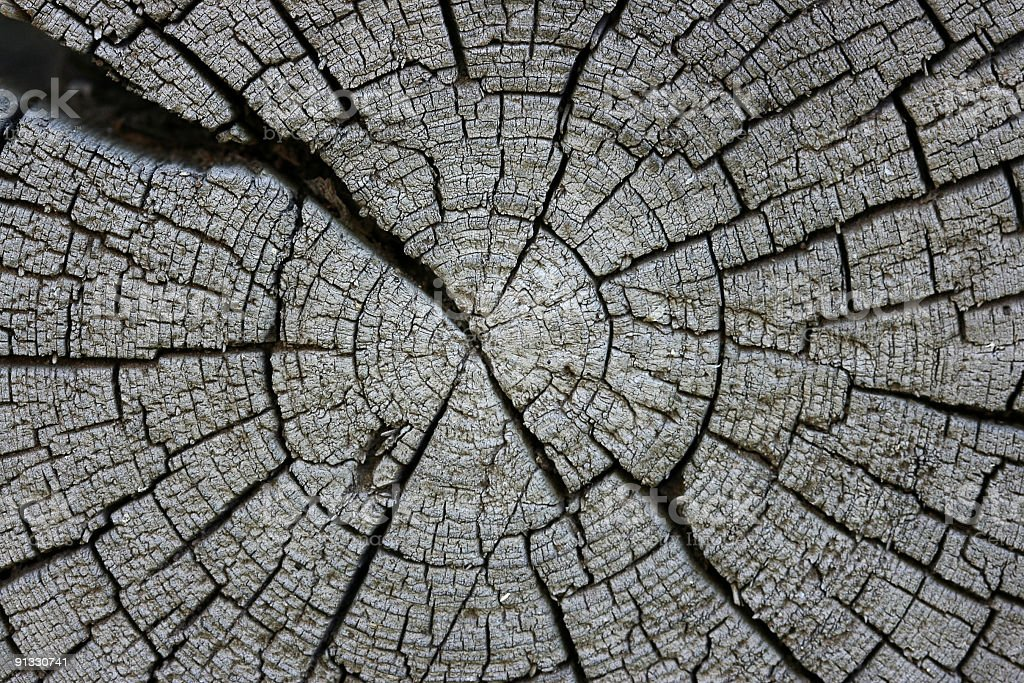 crack, Old log royalty-free stock photo