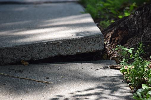 cracked and broken sidewalk in need of repair