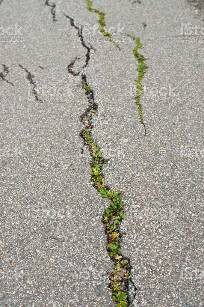 Cracked and Damaged Asphalt stock photo