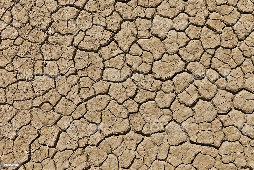Cracked and dried desert royalty-free stock photo