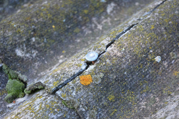 Cracked asbestos sheets old roof. Asbestos Shingles Repair and Removal. House asbestos roof removal. stock photo