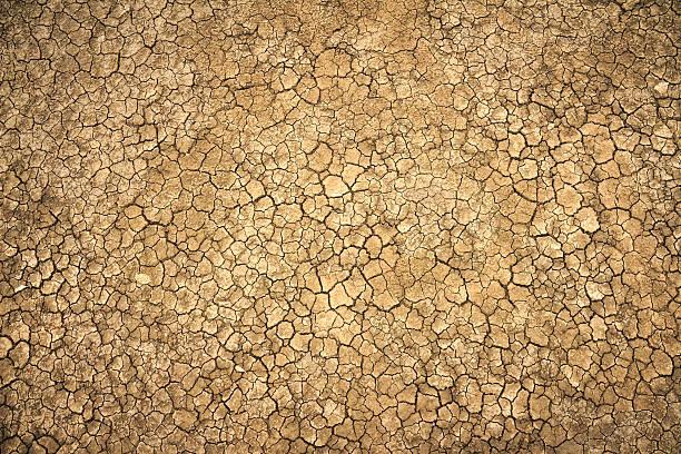 pęknięty gliny ziemi w pory suchej - erodowany zdjęcia i obrazy z banku zdjęć