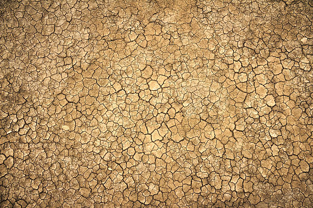 cracked clay ground into the dry season - dry stock photos and pictures