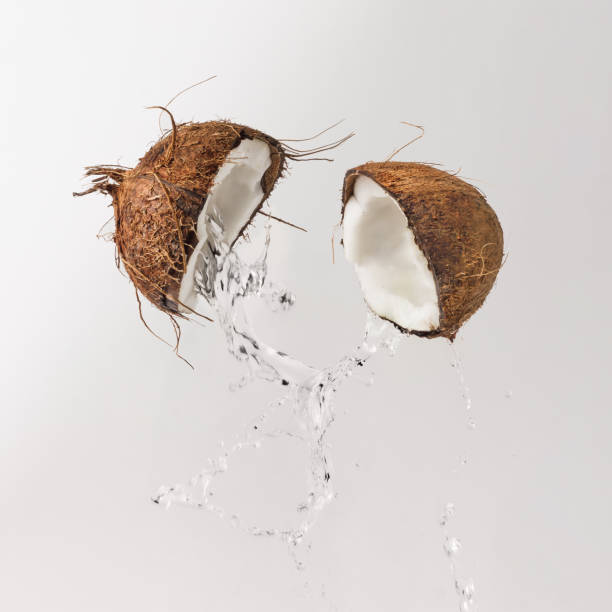 Cracked coconut with water splash. Summer tropical concept. stock photo