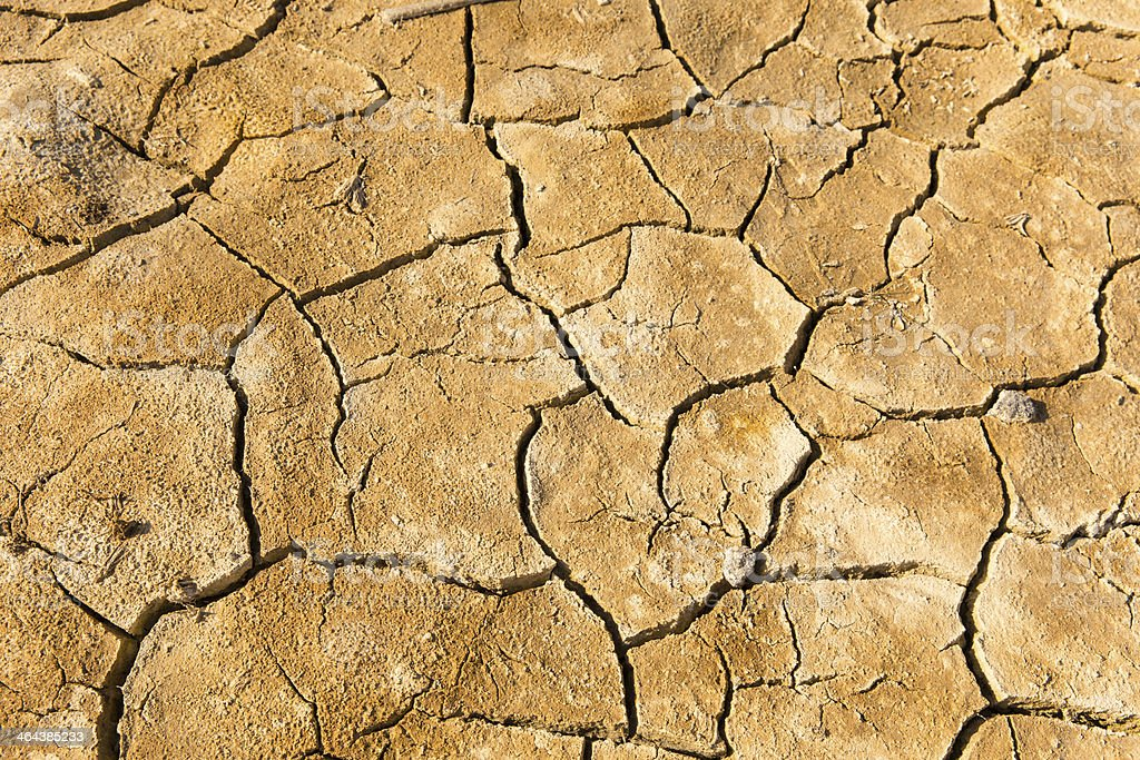 Cracked Desert Ground royalty-free stock photo