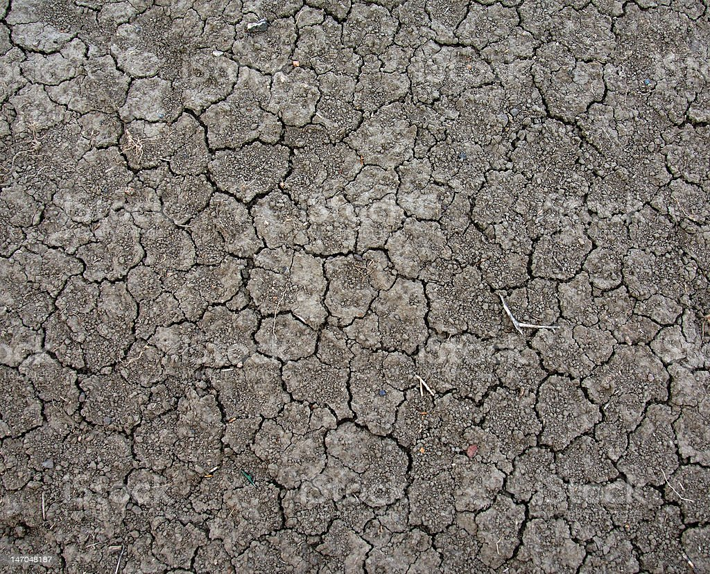 Cracked Dirt royalty-free stock photo