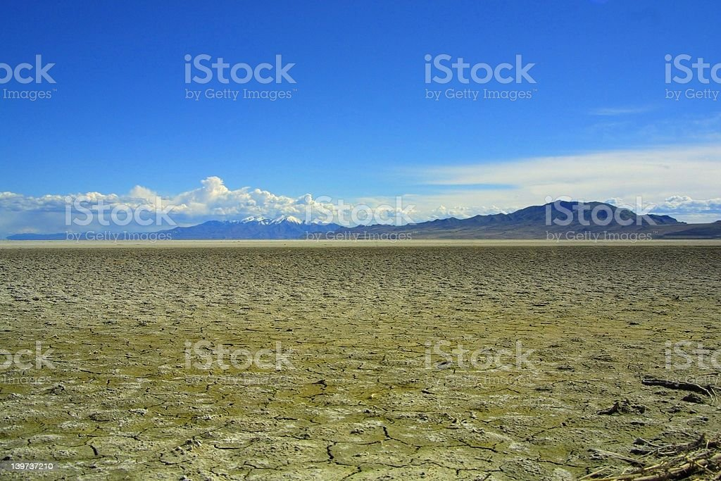 Cracked, dry mudscape royalty-free stock photo