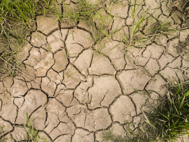 Cracked dry soil stock photo