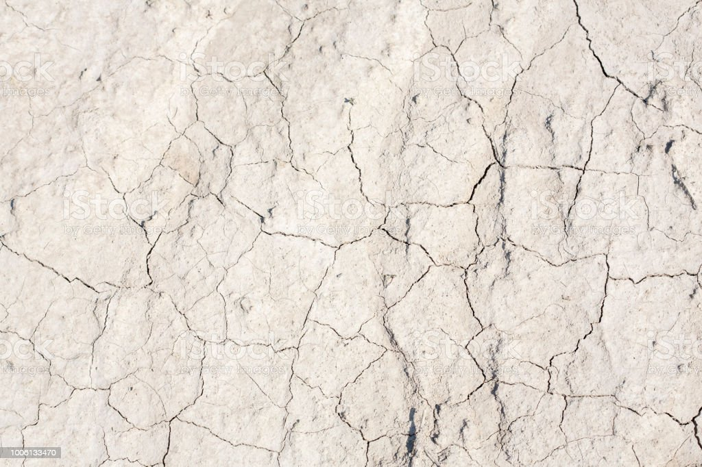 Cracked earth after a drought