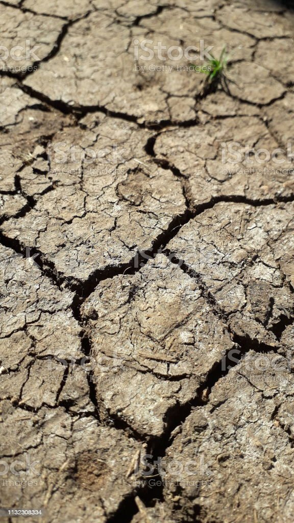 Dry cracked earth during drought. Global warming , ground land are dry