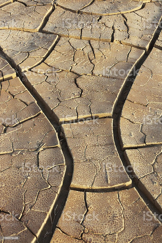 Cracked Earth in Desert Background royalty-free stock photo