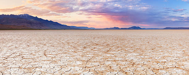 cracked earth in remote alvord desert, oregon, usa at sunset - 泥灘 個照片及圖片檔