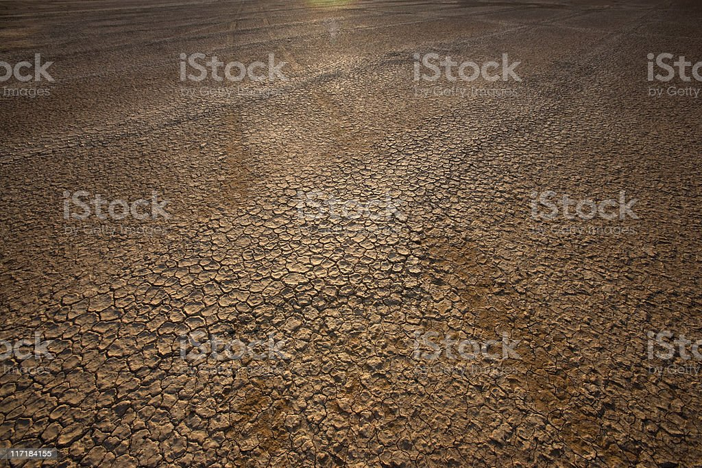 Cracked earth, Northern Cape, South Africa foto