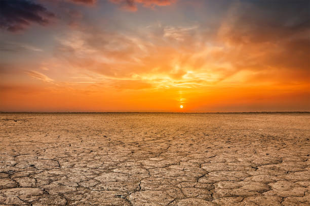 cracked earth soil sunset landscape - desert stock pictures, royalty-free photos & images