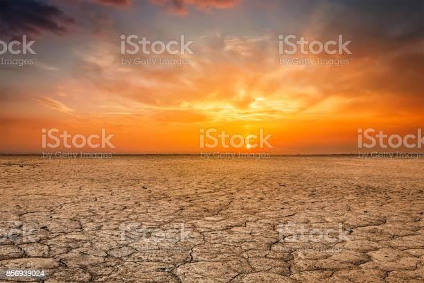 Photo of Cracked earth soil sunset landscape