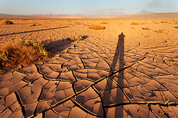 Cracked earth with human shadow stock photo