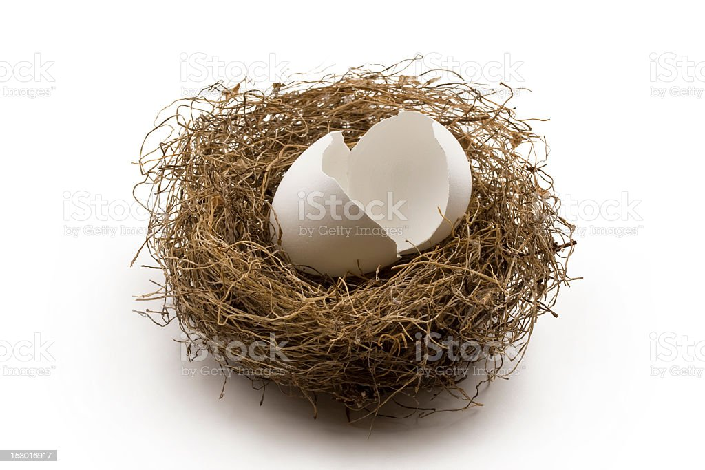 Cracked egg in the center of a birds nest stock photo