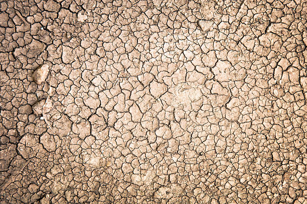 Cracked Ground on earth stock photo