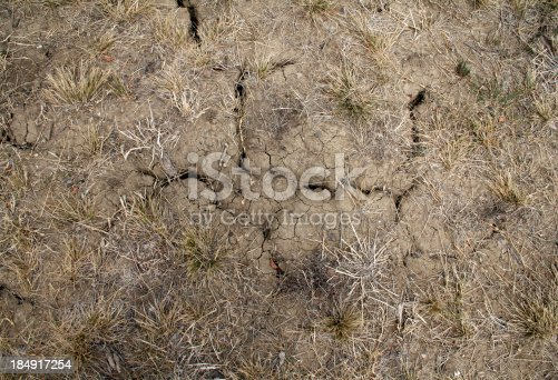 A detailed photo of harsh cracked ground. See more backgrounds here: