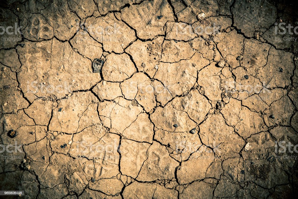 Cracked Ground Texture - Royalty-free Abstract Stock Photo
