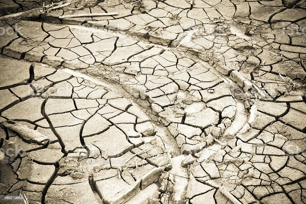 the effects of drought