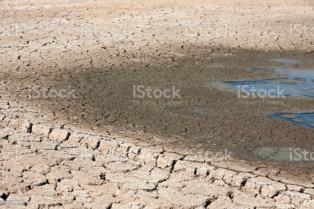 Cracked ground with dry mud around watering hole stock photo