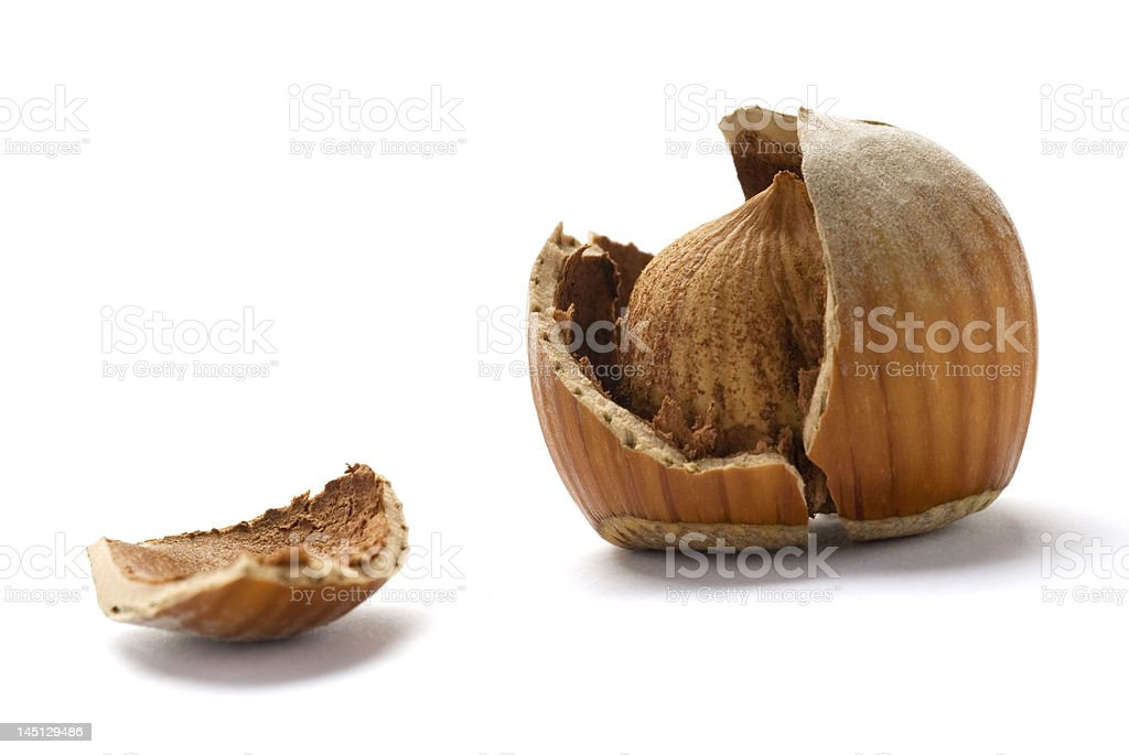 Cracked Hazelnuts isolated on white background royalty-free stock photo