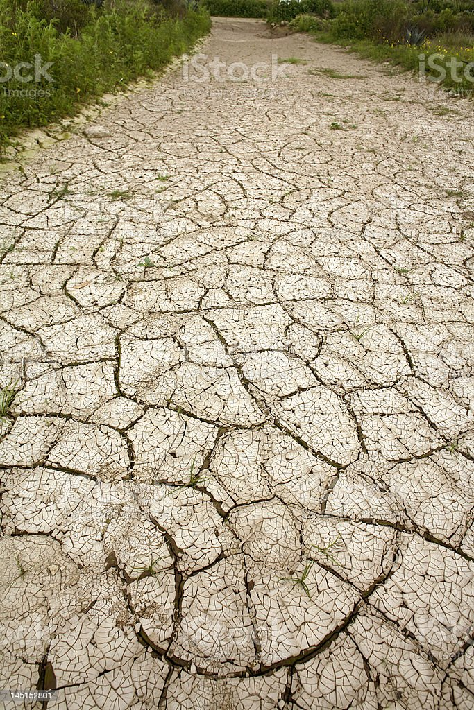 cracked mud at the bottom of a dry pond royalty-free stock photo