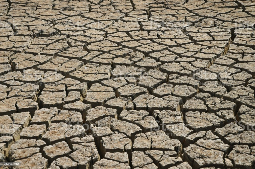 Cracked mud in a farm dam - effect of climate change stock photo